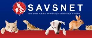 SAVSNET logo